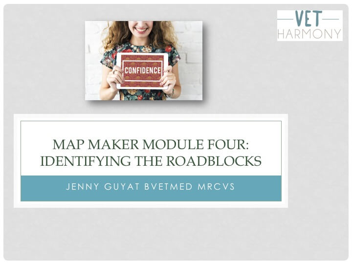 Map Maker Module Four: Identifying the Roadblocks