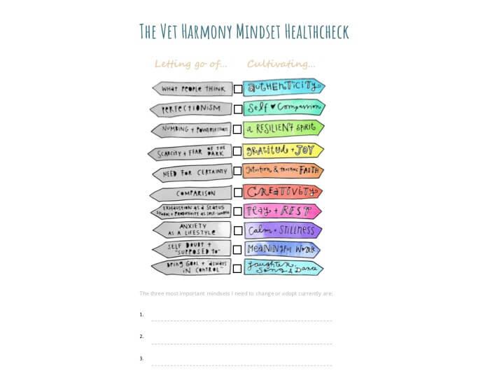 Map Maker Module Five: Mindset Healthcheck