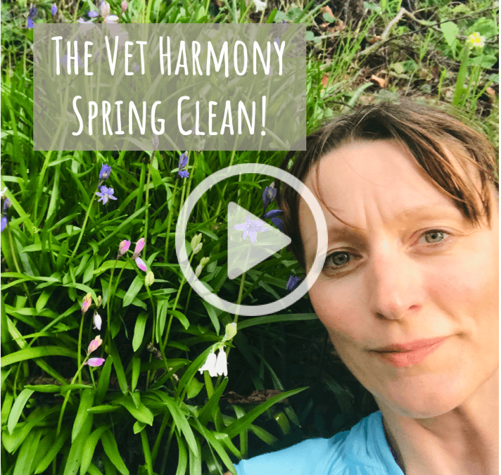 Vet Harmony Spring Clean Research Study 2019