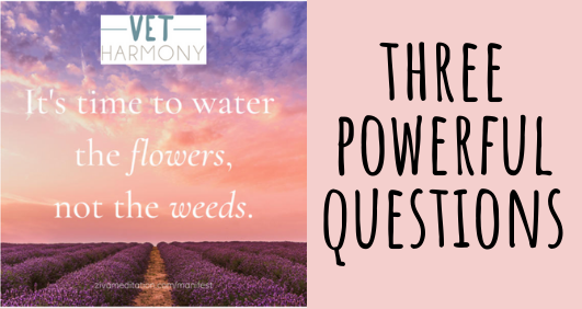 Three powerful questions!